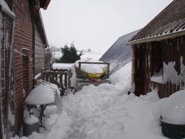 snowin2